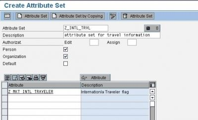 SAP CRM Marketing Attributes Creating an Attribute Set