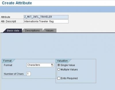 SAP CRM Marketing Attributes Creating an Attribute