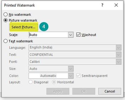 Select Picture Watermark Option