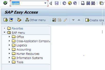find-tcodes-assigned-to-sap-user