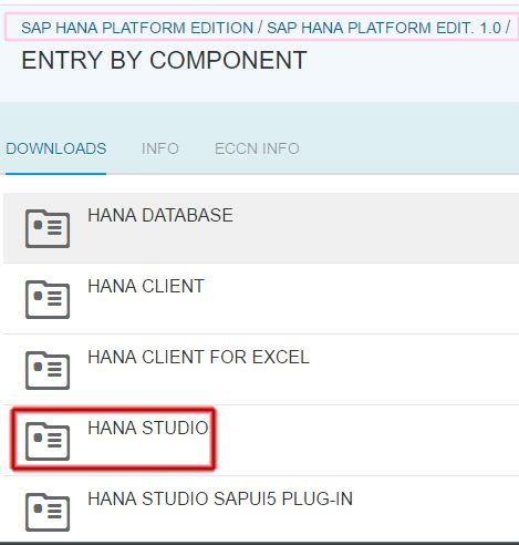 HANA STUDIO