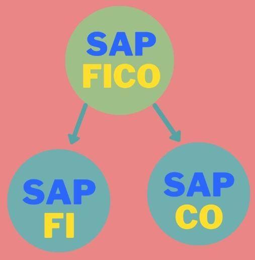 SAP-FI-CO
