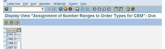 Assignment of Number Range to Order Types for CEM