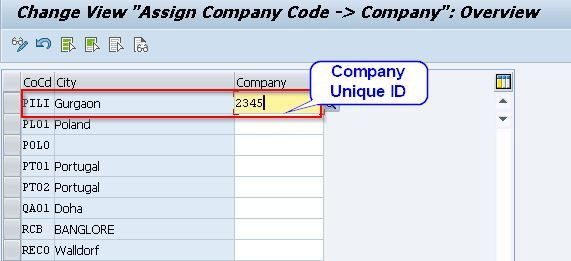 Assign Company Code