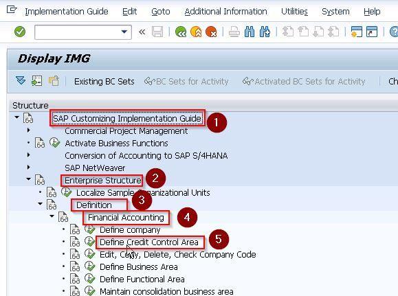 SAP Credit Control Area
