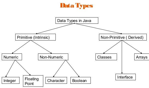 JAVA Variable Types-data types