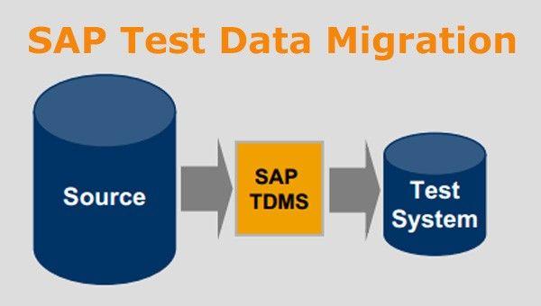 SAP Test Data Migration Server