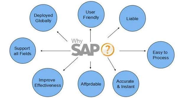 Why SAP