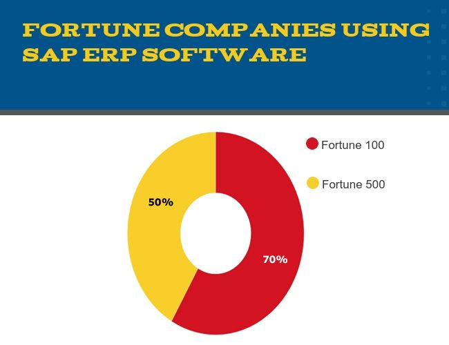 Who uses SAP Software?