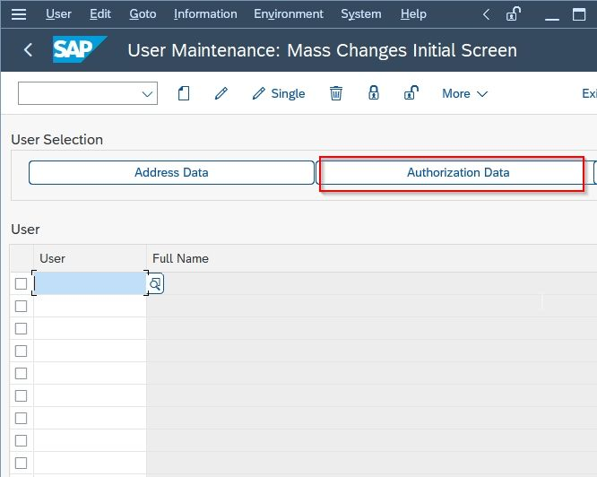 Authorization Data