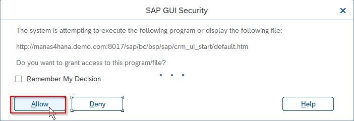 SAP GUI Securiy