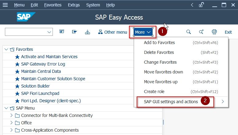 SAP GUI setting and actions