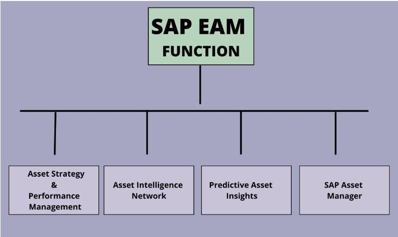 SAP EAM Function