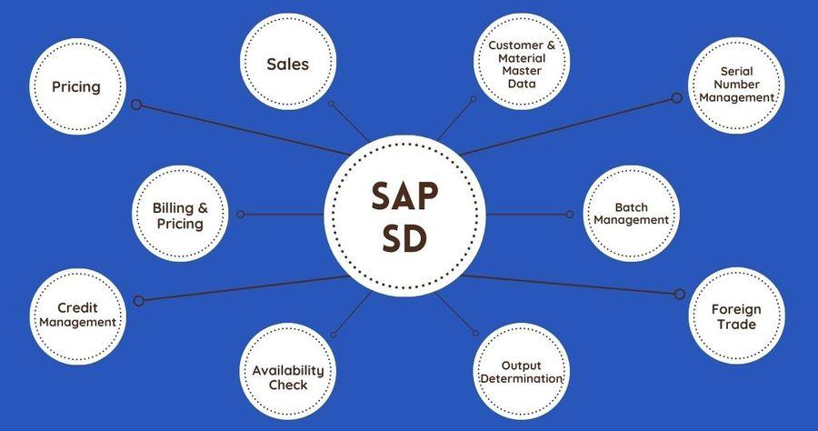 SAP SD Function