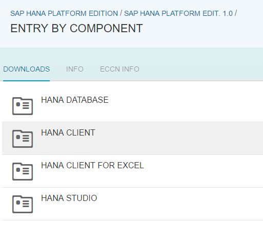 SAP HANA Client 1.0