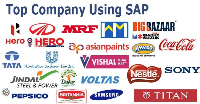 Top Companies Using SAP Software in India